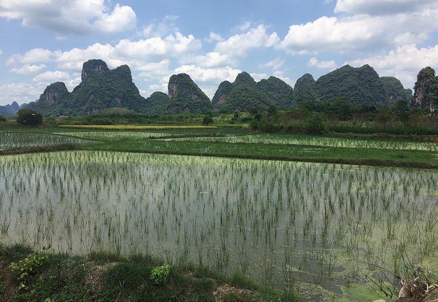 Viatjar a Xina: Consells i informació útil