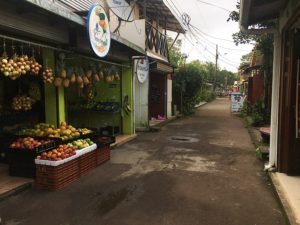 Botigues i supermercats del carrer principal de Tortuguero