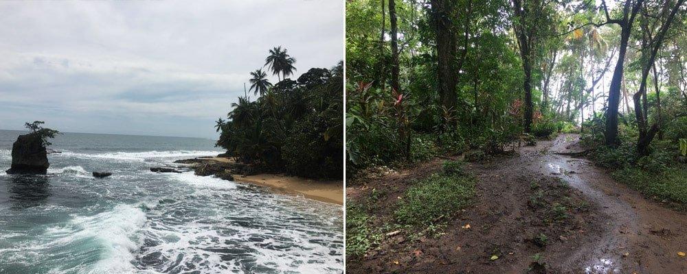 Platja i selva del Refugio Nacional de Vida Silvestre Gandoca-Manzanillo