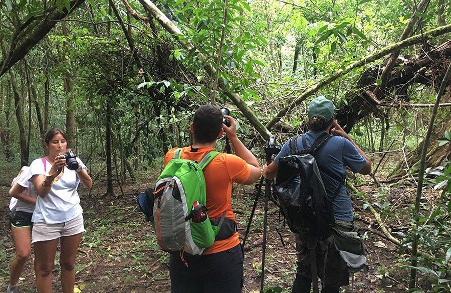 Visitant el Parc Nacional Corcovado amb guia