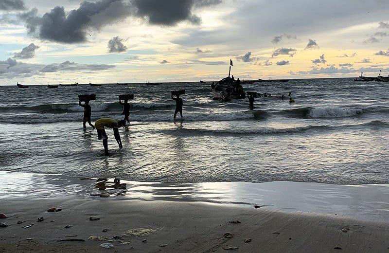 Pescadors descarregant el peix a Kafountine